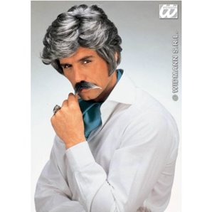 PERRUQUE PLAY BOY + MOUSTACHE GRIS